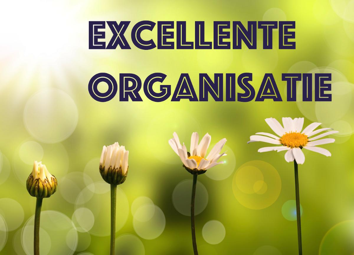 Creer een 9+ organisatie